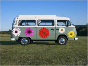 CampinaVDub - Campervan Daisy - Flowers